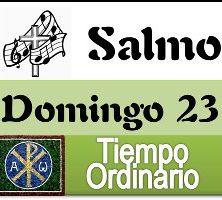Salmo domingo 23 tiempo ordinario ciclo A