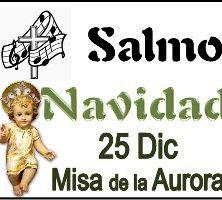 Salmo 25 Diciembre misa de la aurora