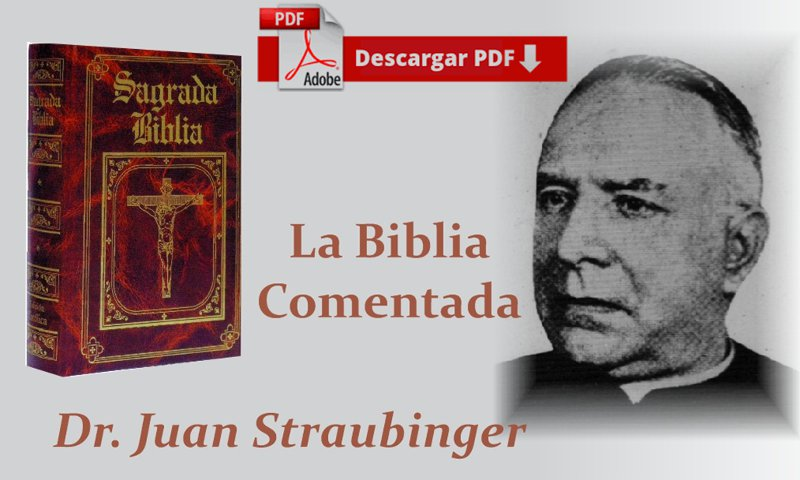 Biblia Straubinger completa
